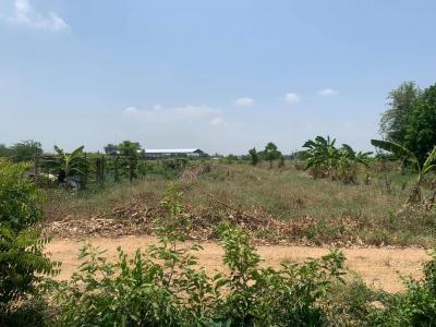 ที่ดิน 450000 ชัยนาท เมืองชัยนาท บ้านกล้วย